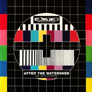 "Carter The Unstoppable Sex Machine ‎- After The Watershed (7"") (VG/VG+)"